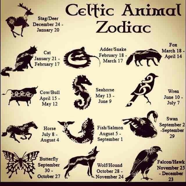 Celtics Animal Zodiac