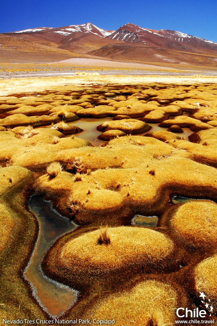 Would you like to know another planet? Come to #Chile and see the Santa Rosa Lagoon you'll be surprised! Caldera, Chile
