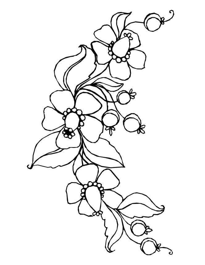 Colouring Pages Of Flowers In Vase : 10 best drawings of flowers images on pinterest