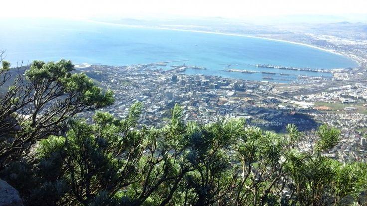 # capetown Противостояние Кейптауна и Джобурга сродни тому, что между Питером и Москвой. В роли Питера - Кейптаун, а Москвы - Джобург. В Кейптауне все спокойней, веселей, более…