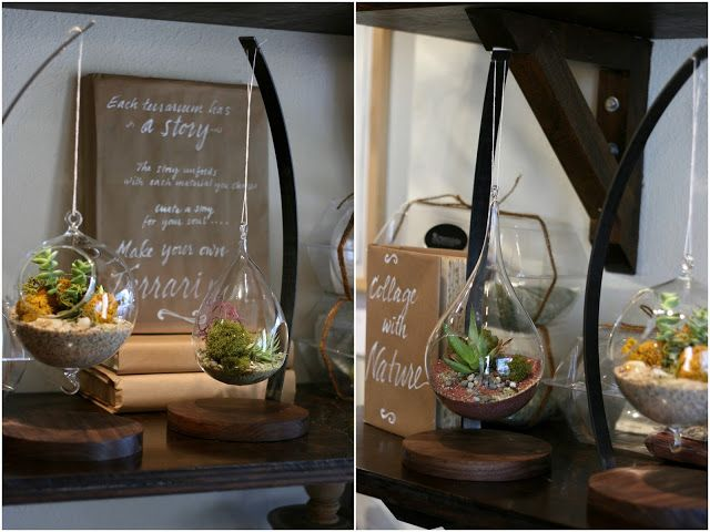 The greatest little terrarium shop and my first attempt...