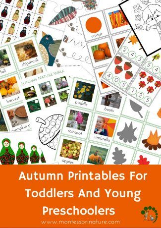 Autumn Printable Activities for Toddlers and Young Preschoolers - Montessori Inspired Educational Printables - Montessori Nature Blog