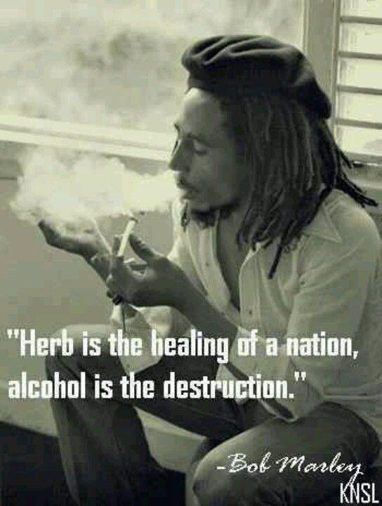 Bob Marley quote on smoking marijuana  drinking alcohol. Quotes http://cropkingseeds.com/