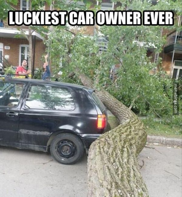 Not everyone is as lucky as this guy! Make sure your car has the right amount of insurance.