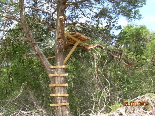 Pallet Tree Stand Join Date Apr 2009 Palletts