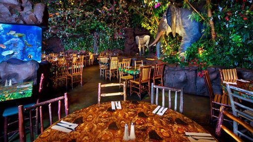Rainforest Cafe Animal Kingdom Park