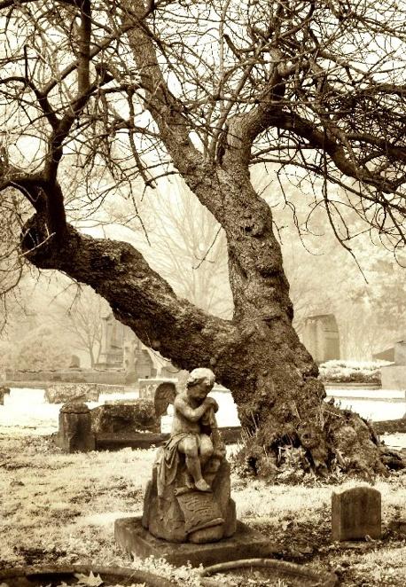 Elmwood Cemetery, near Memphis, TN