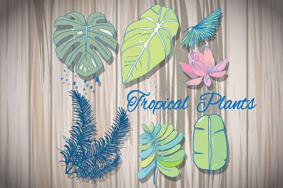 tropical plants by Lesia.kabakova on @creativemarket