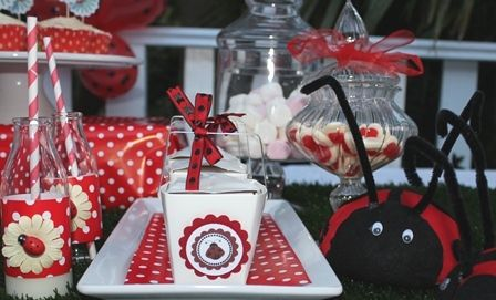 | LADYBUG PARTY IDEAS