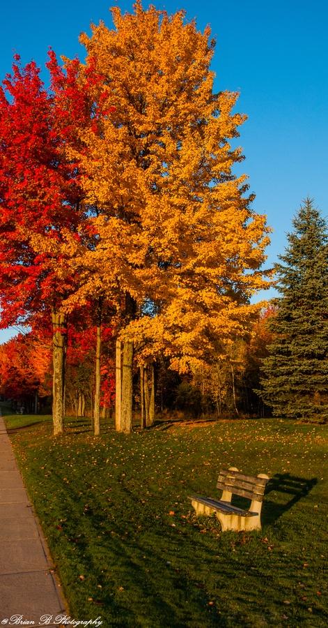 Relax.....Near Centennial Park,Moncton,NB Canada  #Travel-ParadiseDivineCanada