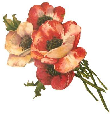 Floral 2 tuck db org