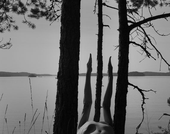Arno Rafael Minkkinen - Trees and Forests