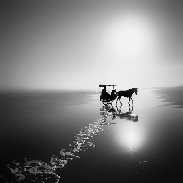 Black And White Nature Photography by Hengki Koentjoro – Fubiz™