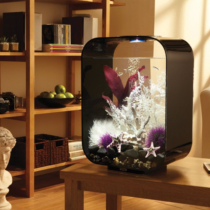The biOrb Life Aquarium is a very popular choice among all the betta fish tanks available in our shop. We also have other great aquarium supplies.