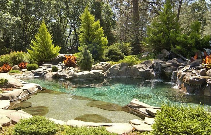 Best 25 Swimming Pool Fountains Ideas On Pinterest Swimming Pool Designs Swimming Pool Water
