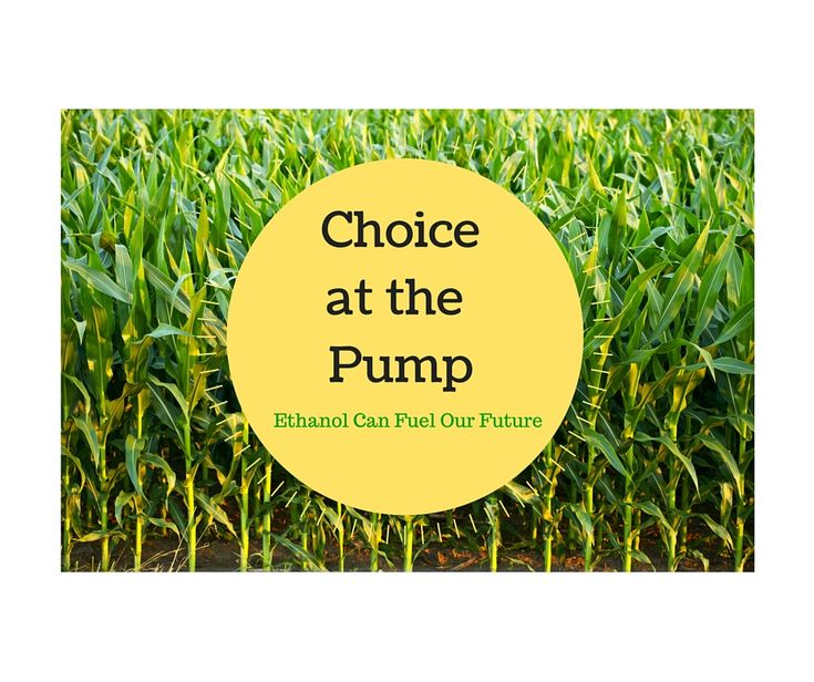 ethanol the fuel for the future Future, or drain on our resources and pockets  key words: carbon dioxide, corn, energy balance, ethanol, fuel, nitrate, oxygenate, pollution, .