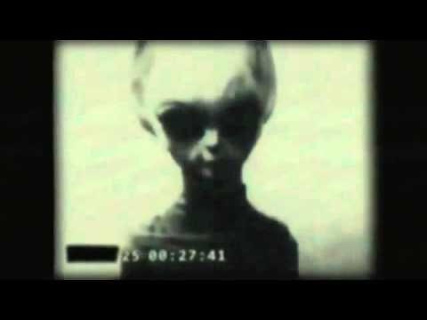 Wikileaks Video Of Roswell Grey Alien - YouTube