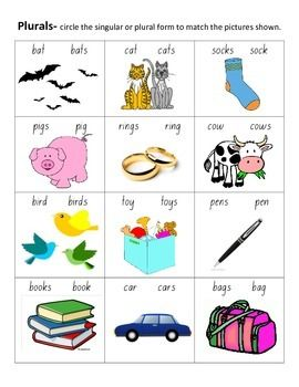 A simple worksheet that involves students in looking at pictures to identify whether the noun is singular or plural and then circle the correct form by using the rule of adding  for regular plural form.