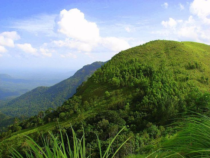 Wonderful place to visit : Ponmudi Hill Station in Trivandrum