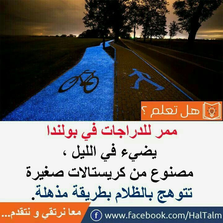 Pin By Angel On هل تعلم Words Quotes Arabic Quotes