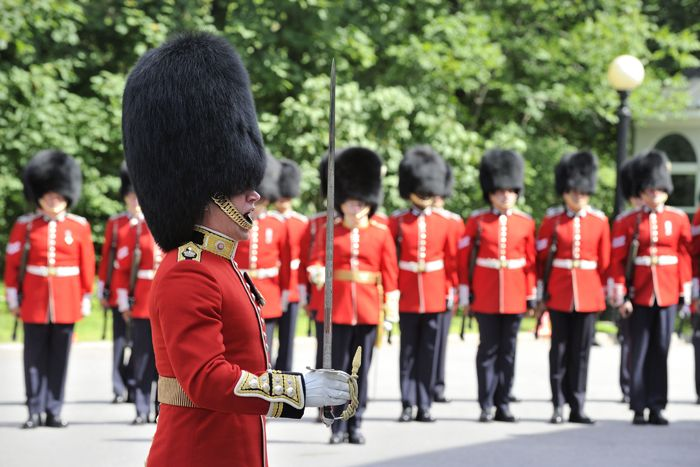 governor general's foot guards - Google Search