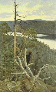 Palokärki, 1892