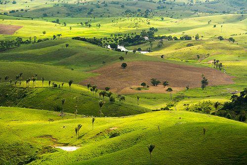 Ibateguara (ALAGOAS) BRASILE | Cajueiro, Alagoas » Mapas|Fotos|Imagens de Satélite|Populações ...