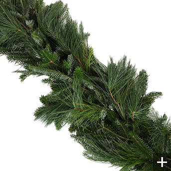 Fresh Mixed Fraser Pine Holiday Garland: Decor Ideas, White Pine, Mixed Fraser, Holidays Garlands, Holidays Ideas, Holidays Decor, Christmas Decor, Fraser Pine, Fresh Mixed