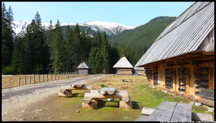 Dolina Chochołowska w Tatrach - Tatrzański Park Narodowy - wiosna - Tatry - Polish Mountain - Poland - góry - Zakopane