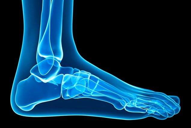 The ankle: A user's guide - Health - Runner's World