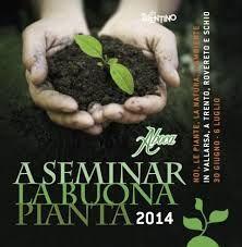 A seminar la buona pianta - Parliamo di Cucina