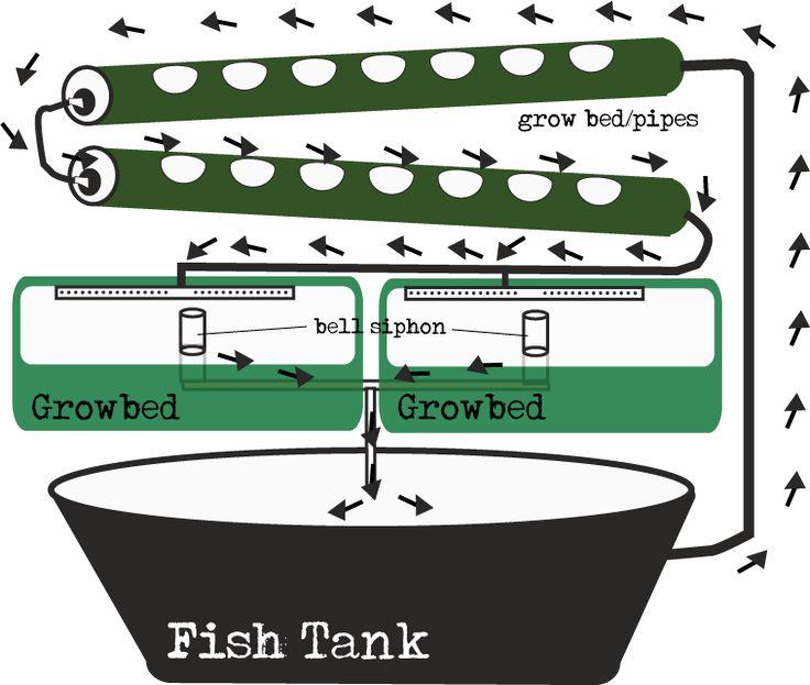 aquaponic diagrams   ebb and flow gravity feed aquaponic diagram