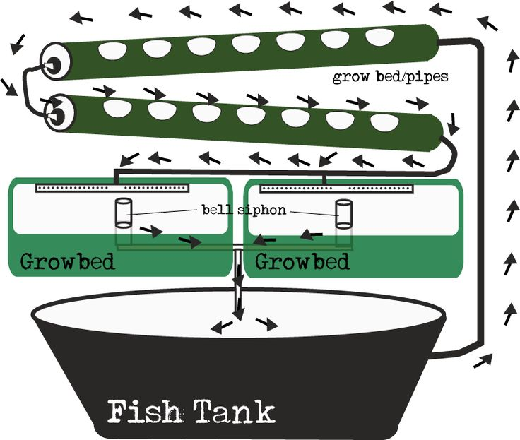 39 Ingenious Diagrams For Your Home And Garden Projects: 17+ Images About Aquaponics Gardening On Pinterest