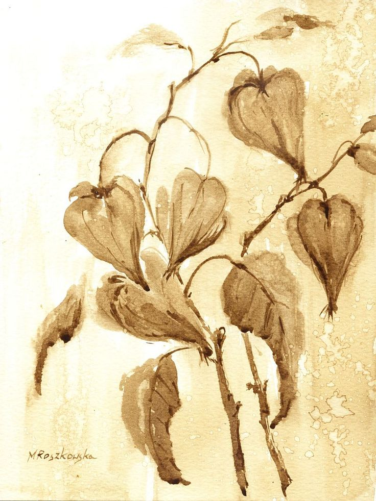 Miechunki - watercolour painted with coffee - Maria Roszkowska