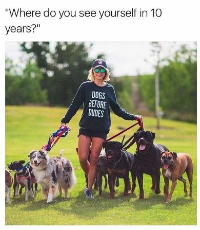 You know what your future holds and you�re 100% on board with it: | 18 Pictures That Are Literally You As A Dog Owner