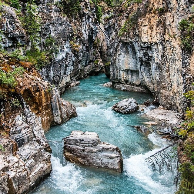 This river in the #MarbleCanyon in British Columbia makes me want to go for a swim! Too bad there's really isn't a place that seems swimmable!