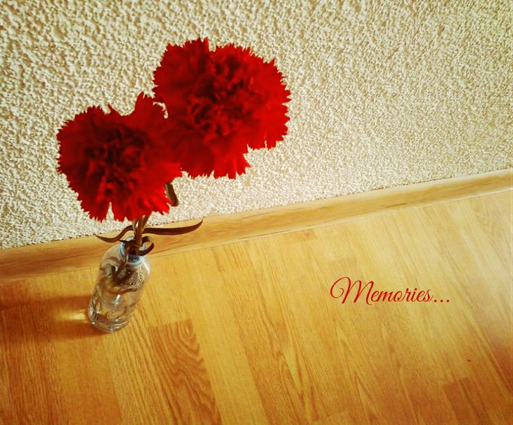 Happy day :) #flower #red #carnation