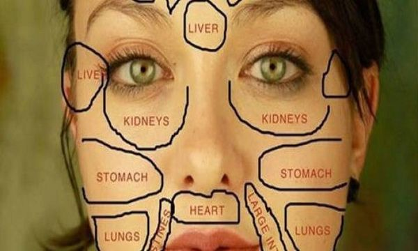 When one of our biggest organs – our skin, begins to give symptoms, this can be an indicator that something is wrong. And what is that, we can see from our face. According to Chinese medicine every part of our … Read More