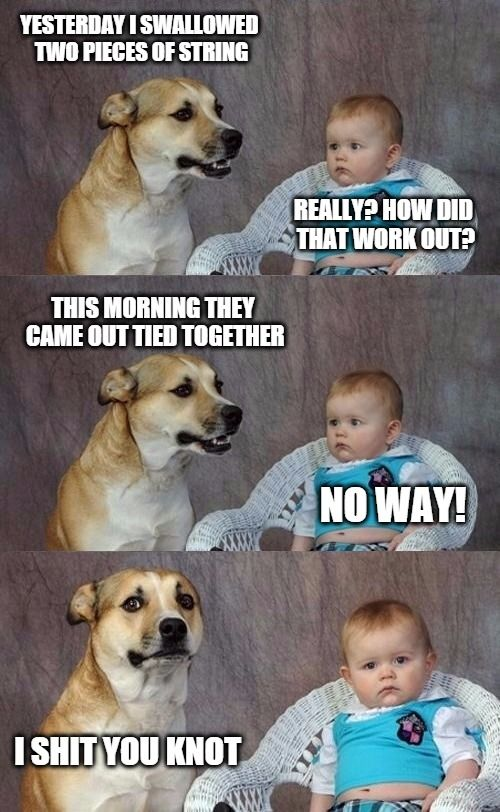 And it's out of there   YESTERDAY I SWALLOWED TWO PIECES OF STRING REALLY? HOW DID THAT WORK OUT? THIS MORNING THEY CAME OUT TIED TOGETHER NO WAY! I SHIT YOU KNOT   image tagged in dad joke dog 2   made w/ Imgflip meme maker