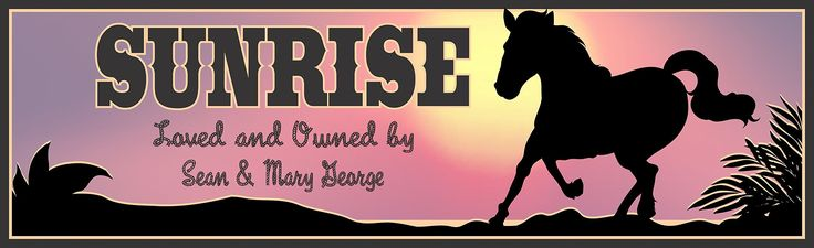 Personalized Horse Stall Sign with Sunset and Horse Silhouette, Horse Lovers, Barn Décor, Country Décor, Custom Horse Gifts. This beautiful personalized horse stall sign is the perfect way to decorate your barn or horsebox! If your pony is your pride and joy then showcase the deep love and affectionate bond you share with this stunning customizable horse owner sign. With its gorgeous pink sunset background, silhouette of a galloping horse, and western-themed saloon and rope fonts, this...