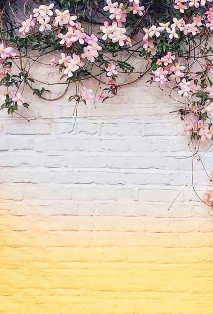Duvar Kagidi Latar Belakang Doodle Bunga Bunga Cat Air