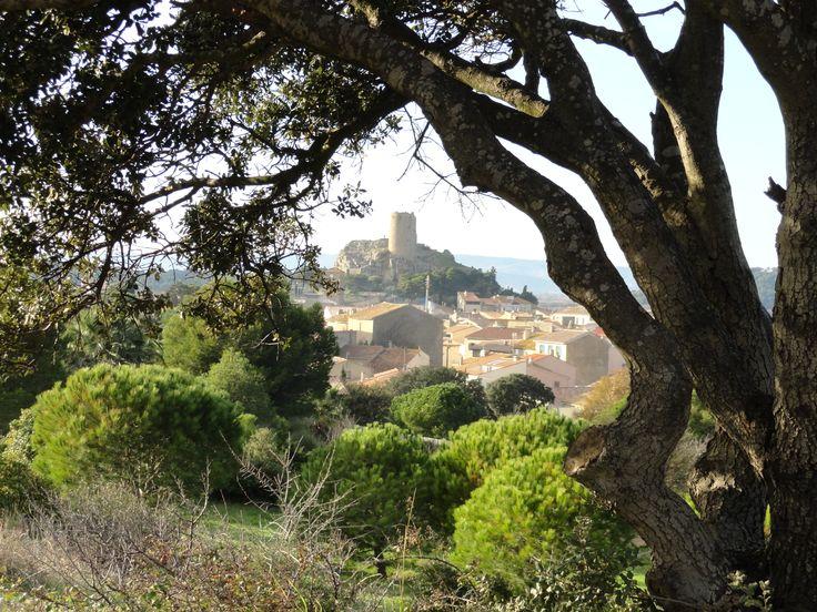 Gruissan village et sa Tour Barberousse à travers les pins du massif de la Clape Photo d'Alain