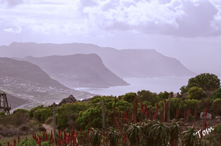 A view from Red Hill, Simon's Town