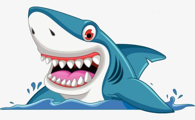 Hand Painted Cartoon Shark Png And Clipart Shark Pictures Shark Shark Logo