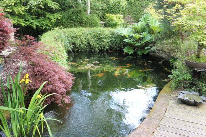 30 Backyard Pond Ideas Designs With Images Ponds Backyard Backyard Water Feature Small Backyard Ponds