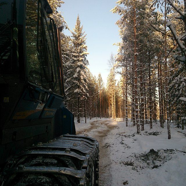 Really nice and sunny for a Stora Enso forest worker! Just a little bit cold, -20 degrees celcius. At least there are no mosquitos.