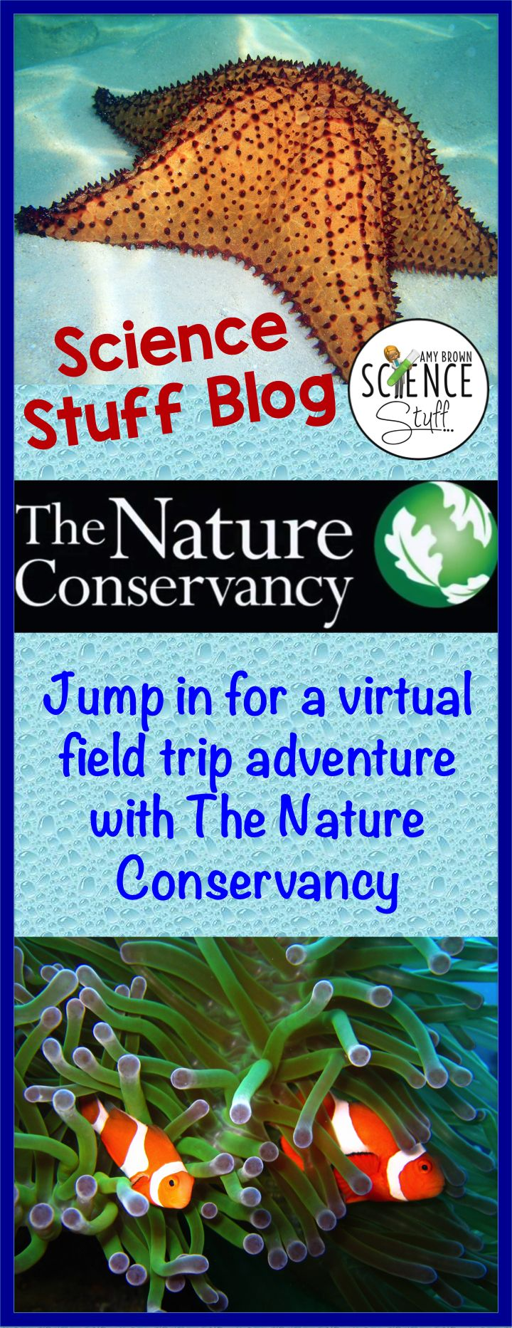 252 best Virtual Field Trips images on Pinterest | Virtual field ...