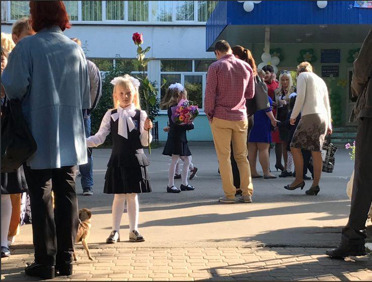 Πρώτη μέρα στο Σχολείο σήμερα στη Ρωσία. Κλειδιά στην εμφάνιση: Λευκό καλτσόν, φιόγκοι και λουλούδια! 👩🏫 В России сегодня первый день нового учебного года. Всюду белые колготки, бантики и цветы! WWW.PUSHKIN.GR Φωτό: @evahartog (1/9/17) #День #знаний #russia #pushkin #institute #athens #greece #russiangreek