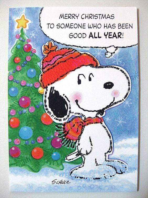 Snoopy Christmas Cards.Pin By Kristy Harvey On Cartoon Characters Snoopy