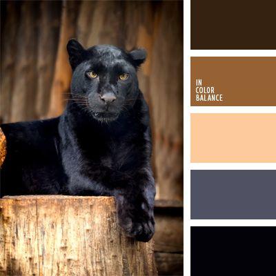 color negro carbón, color negro cuervo, color pantera, colores para la decoración, elección del color, matices cálidos del marrón, negro, paletas de colores para decoración, selección de colores, tonos marrones.